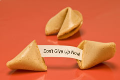 Don't Give Up Now Fortune Cookie Stock Photo