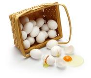 Don't ha messo tutte le vostre uova in un canestro fotografie stock