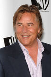 Don Johnson. Actor DON JOHNSON, star of TV series 'Just Legal', at the WB TV Network's 2005 All Star Celebration in Hollywood. July 22, 2005  Los Angeles, CA Stock Photography