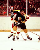 Don Marcotte Boston Bruins Royalty Free Stock Images