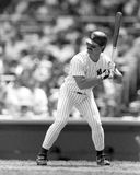Don Mattingly, New York Yankees Royalty Free Stock Photography
