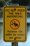 Don't feed ducks. A sign stating: do not feed the wild waterfowl in english and portuguese Royalty Free Stock Photo