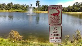 Dont Molest Alligators. A public service announcement from Clearwater Florida Stock Photography