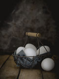 Don't put all your eggs in one basket Eggs in a busket Royalty Free Stock Photos