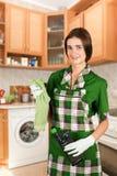 Dona de casa Foto de Stock Royalty Free