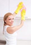 Dona de casa em casa Imagem de Stock
