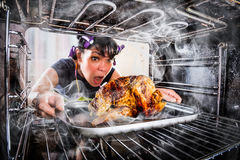 Dona de casa engraçada deixada perplexo e irritada O vencido é destino! Foto de Stock Royalty Free