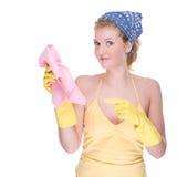 Dona de casa no trabalho Imagens de Stock