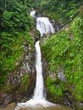 Dona Juana Falls Landscape Puerto Rico Immagini Stock Libere da Diritti