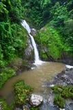 Dona Juana Falls - Puerto Rico. Beautiful Dona Juana Falls in the Cordillera Central rainforests of Puerto Rico Royalty Free Stock Photos