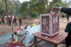 Donación del dinero en templo hindú en Nepal Fotos de archivo