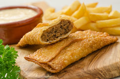 Donair Egg Rolls. Spicy donair egg rolls with donair sauce and french fries royalty free stock photography