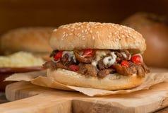 Donair hamburgare Royaltyfri Fotografi