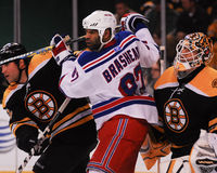 Donald Brashear, New York Rangers Στοκ Εικόνες