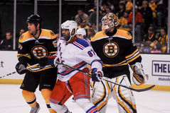 Donald Brashear, New York Rangers Στοκ εικόνες με δικαίωμα ελεύθερης χρήσης