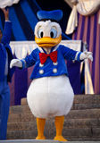 Donald Duck. Donald Fauntleroy Duck  dancing on stage at Disney World in  Orlando Florida Stock Images