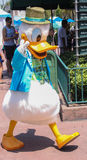 Donald Duck. Disney Legend Donald Duck flashes the peace sign as he walks around the Hollywood Studios, Orlando Royalty Free Stock Images