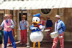 Donald Duck at Disneyland. Donald Duck playing a drum at Disneyland while a band plays in the background Stock Photos