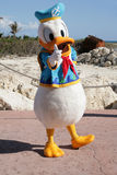Donald duck dressed as a captain Royalty Free Stock Photos