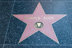 Donald Duck Hollywood Star. HOLLYWOOD, CALIFORNIA - February 8 2015: Donald Duck's Hollywood Walk of Fame star on February 8, 2015 in Hollywood, CA Stock Photography