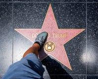 Donald Trump Star Imagem de Stock Royalty Free