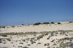 Donana park narodowy w Andalusia, Hiszpania zdjęcie stock