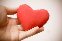 Donante de amor Foto de archivo