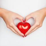 Donante de concepto del amor Fotos de archivo libres de regalías