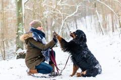 Donante de la mujer y del perro alto-cinco en la nieve imágenes de archivo libres de regalías