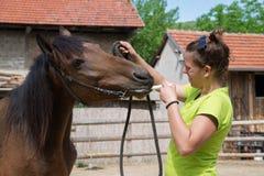 Donante de una medicina a un caballo Foto de archivo libre de regalías