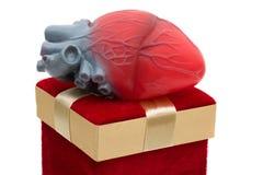 Donante del regalo de la vida Imagen de archivo libre de regalías