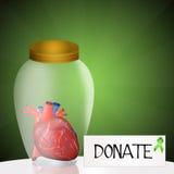 Donate organ Royalty Free Stock Image