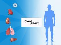 Donateur d'organe illustration libre de droits