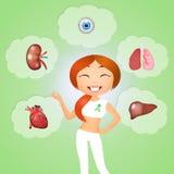 Donateur d'organe illustration stock