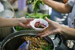 Donating food is helping human friends in society : Helping People With Hunger With Kindness : the concept of life problems,. Hunger in society : Hand-feeding royalty free stock photography
