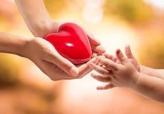 Donation av liv - ge en hjärta för att behandla som ett barn royaltyfria foton
