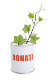 Donation Box and Green Plant Royalty Free Stock Image