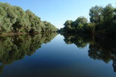 Donau-Dreieck stockbild