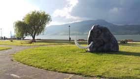 Donau-Küste bei Gornji Milanovac lizenzfreie stockbilder