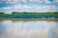 Donau nära Calafat, Rumänien Arkivbilder