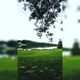 Donau an sonnigem Tag Niederösterreichs Lizenzfreie Stockfotos