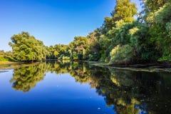 Donaudelta Royaltyfri Fotografi