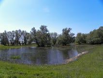 Donaudelta Arkivfoton
