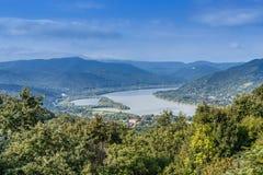 Donaukrökning Royaltyfri Fotografi