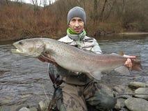 Donaulachs hucho Fischen in Mitteleuropa lizenzfreie stockfotos