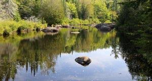 Doncaster River Park Stock Photos