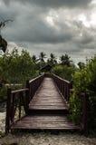 Donde el camino puede llevar Fotos de archivo