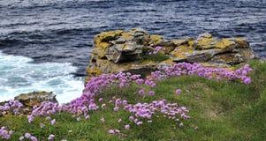 Donegal κομητειών ακτή Στοκ Εικόνα