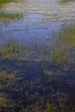 Donegal λίμνη Στοκ Εικόνες