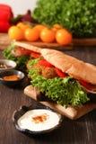 Doner kebab - falafel fresh vegetables in pita Brad Royalty Free Stock Photography